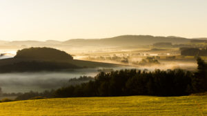41566356 - autumnal landscape in fog, sumava, czech republic