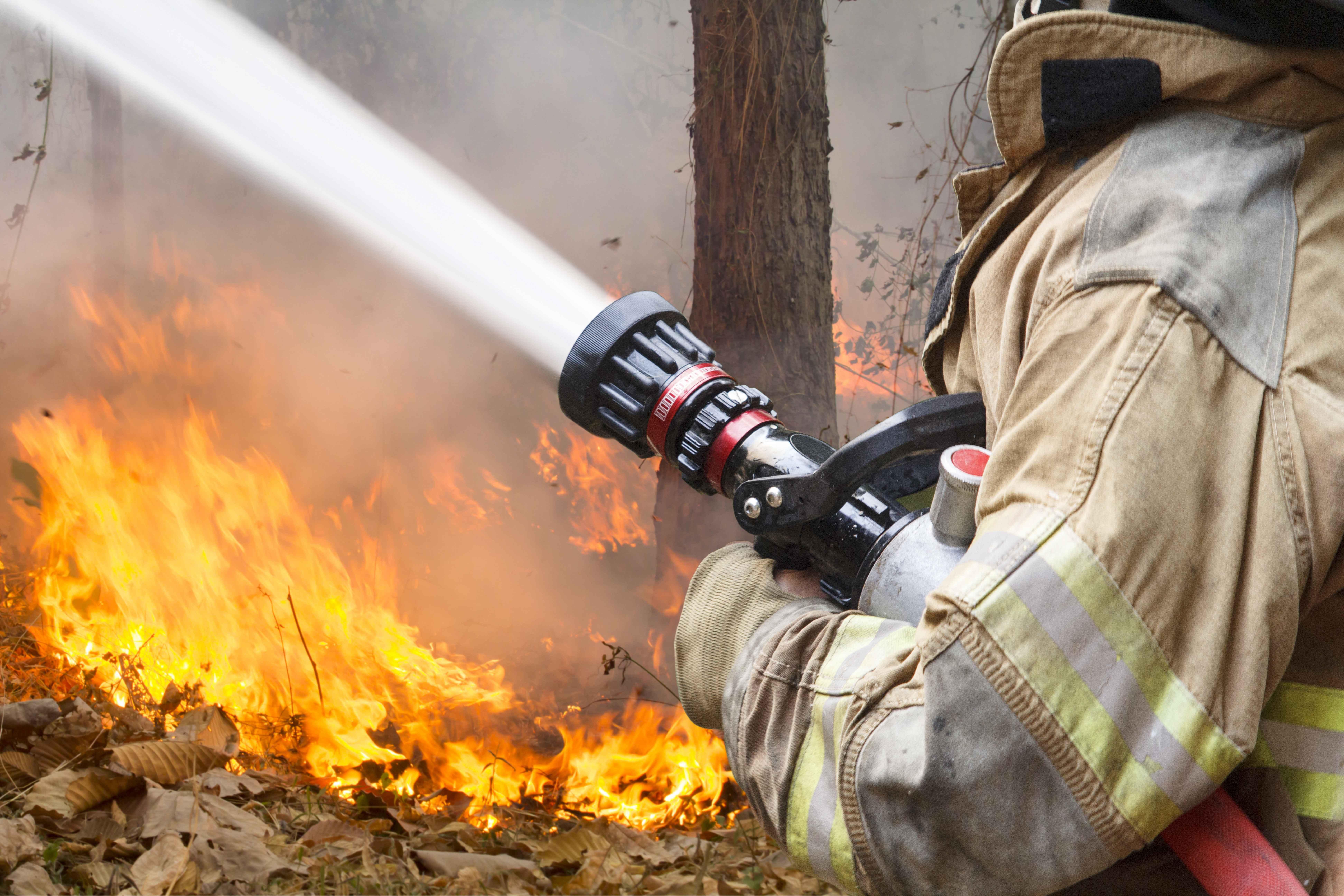 Důsledná prevence a spolupráce lesníků s hasiči může pomoci ve zdolávání lesních požárů