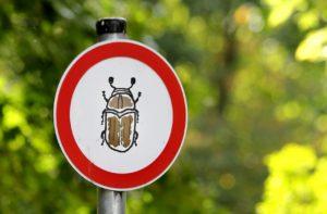 16563923 - danger bark beetle sign